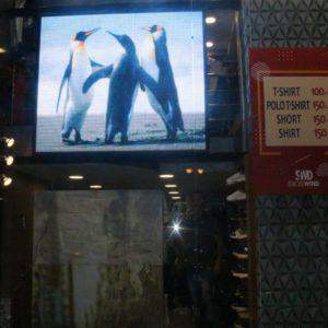 شاشات عرض الاعلانات الدعائية | نظرة فى استخدام شاشات ليد فى التسويق